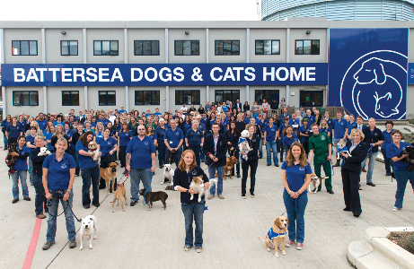Battersea – My Experience